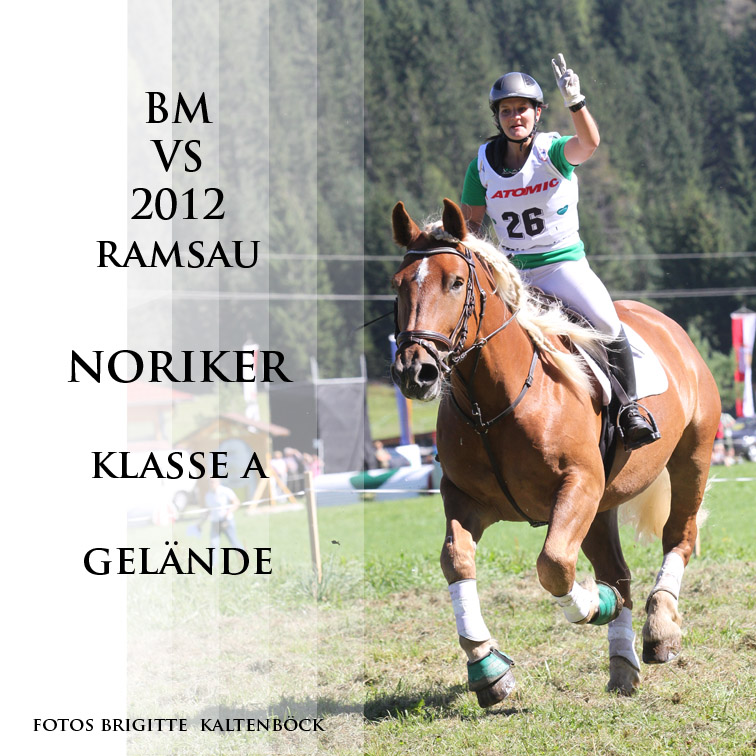bm_vs_ramsau_2012_noriker_a