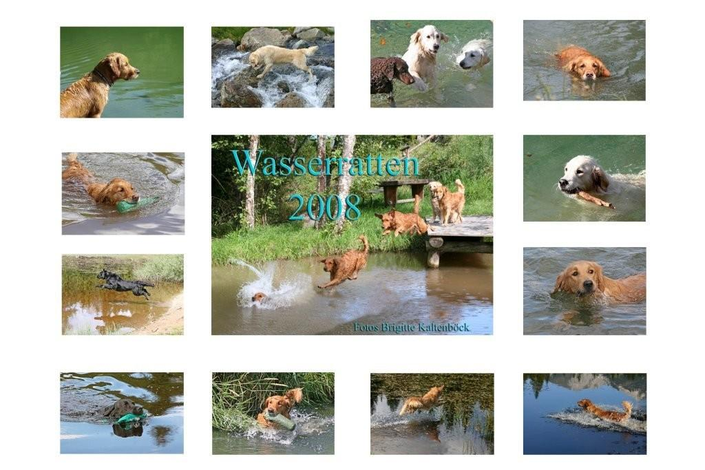 Index_Kalender_ Wasserratten